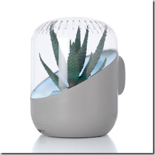 Andrea-plant-air-purifier-aloe