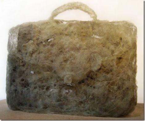 dust handbag