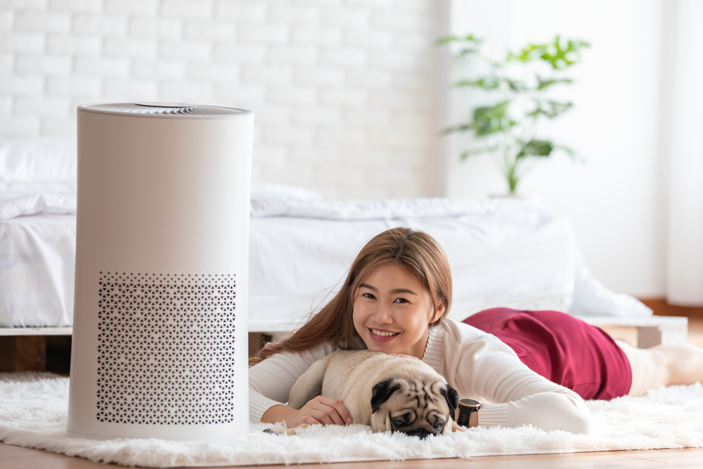 3 Best Air Purifiers For Pets In 2020 Air Purifier Reviews,Lilly Pulitzer And Starbucks