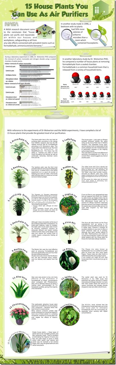 house-plants-air-purifiers
