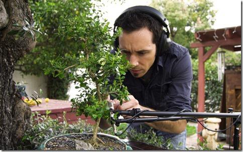 bonsai music